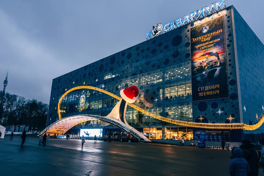 «Вокруг света за Новый год» — сказочное новогоднее представление в Москвариуме