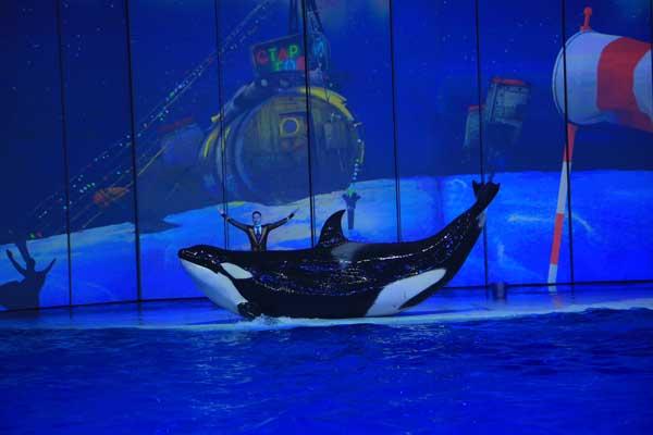 Шоу на воде «Вокруг Света за Новый Год»